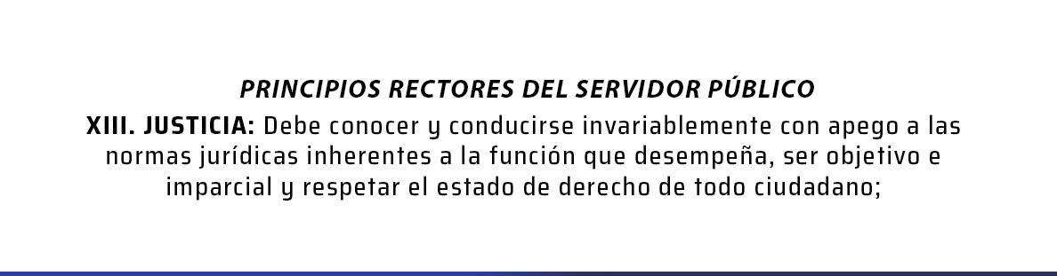 Principios rectores del servidor público